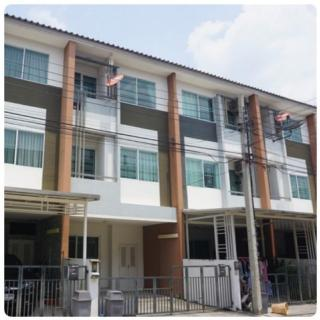 For rent The Trust City Ngamwongwan 25 near the mall ngamwongwan